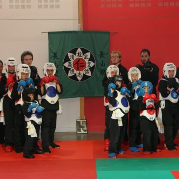 Little Truong Son dragons and tigers of Île de Ré on the national podiums